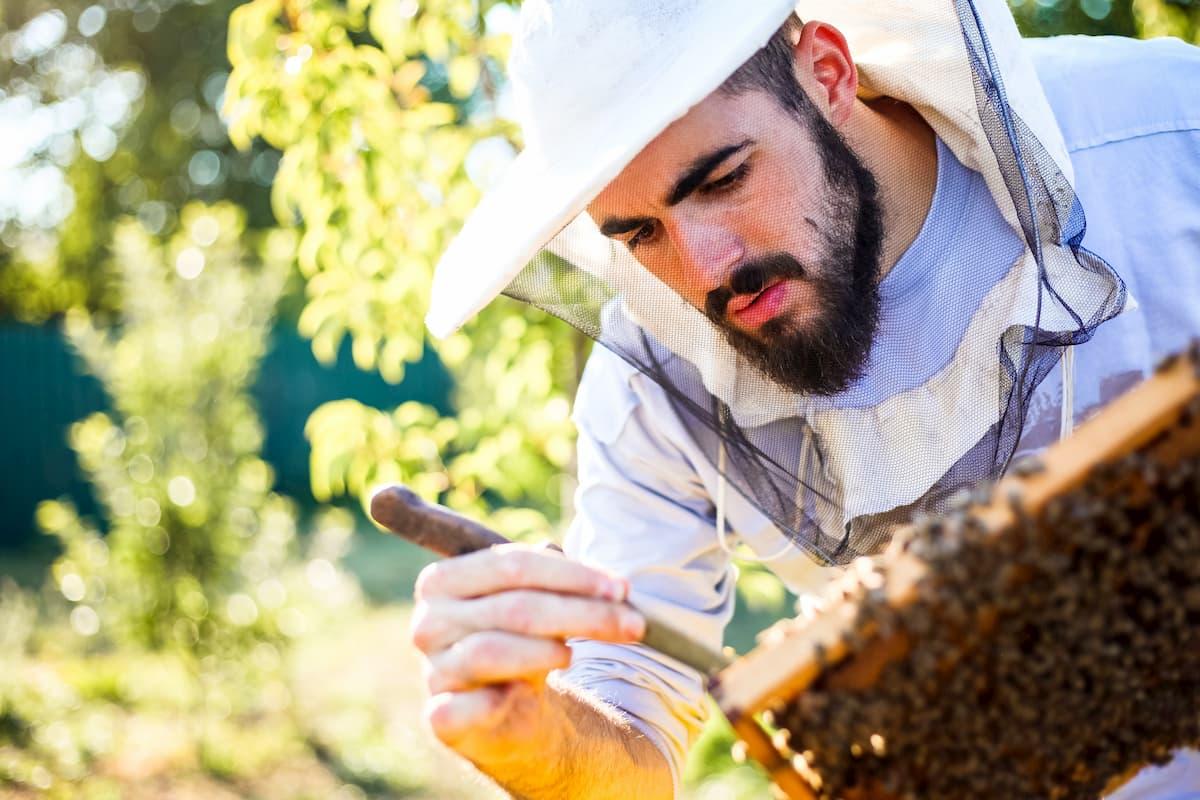 acheter tenue d'apiculteur