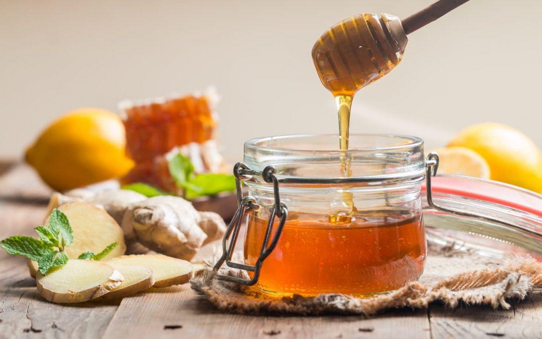Tout connaître du miel, ce nectar divin